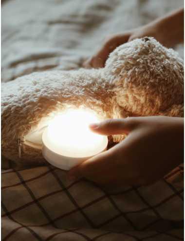 Moonie humming bear with a lamp   Carmel